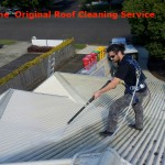 4-Orig-Grp_Roof-Cleaning